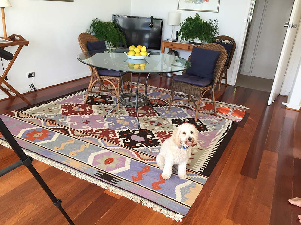 Olefin rugs review area