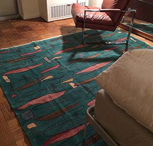 Pile rug in room